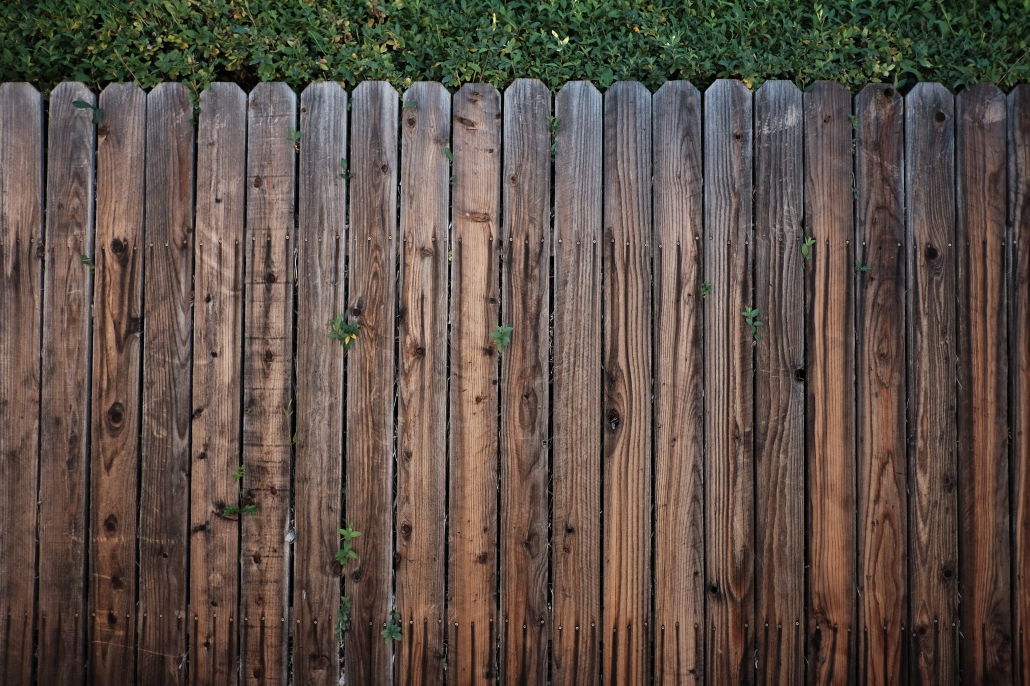 Canva-Brown-Wooden-Fence